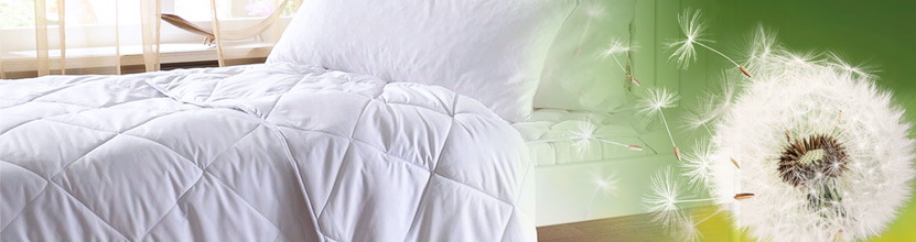 allergikergeeignet kopfkissen f r allergiker bettwaren shop. Black Bedroom Furniture Sets. Home Design Ideas
