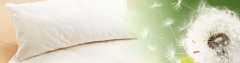 allergikergeeignet bettw sche f r allergiker bettwaren shop. Black Bedroom Furniture Sets. Home Design Ideas