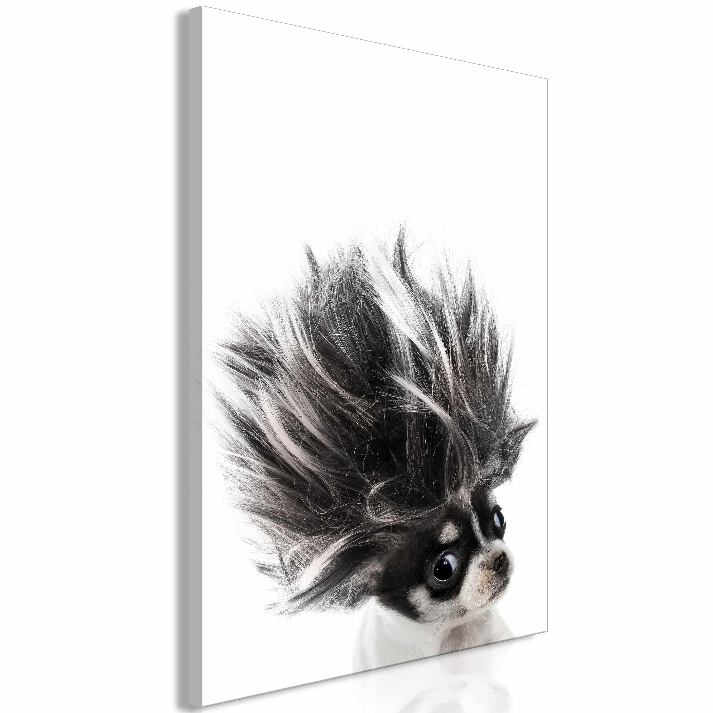Artgeist Wandbild - Chihuahua (1 Part) Vertical
