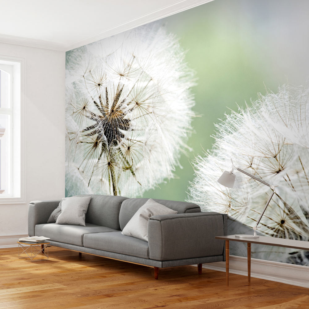 Artgeist Fototapete - Zwei große Pusteblumen