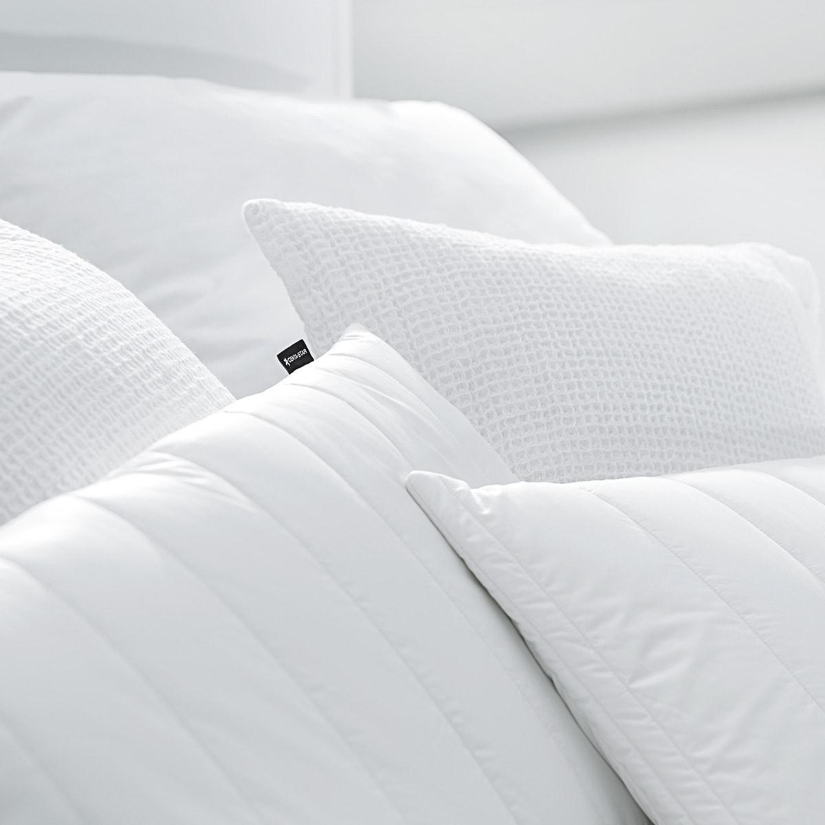 centa star kopfkissen allergo protect g nstig online kaufen bei bettwaren shop. Black Bedroom Furniture Sets. Home Design Ideas