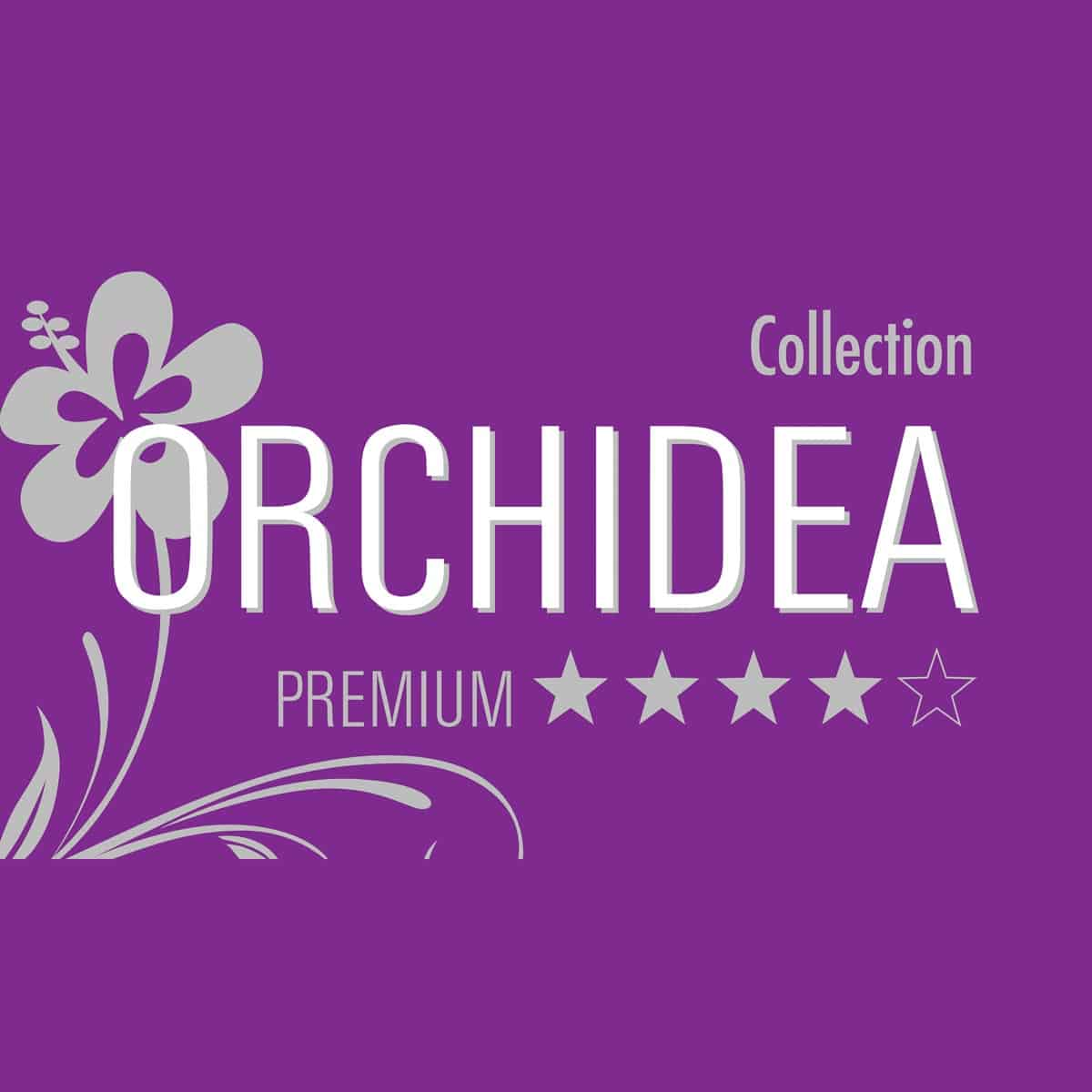 schlafstil daunendecke orchidea medium 100 daunen g nstig online kaufen bei bettwaren shop. Black Bedroom Furniture Sets. Home Design Ideas